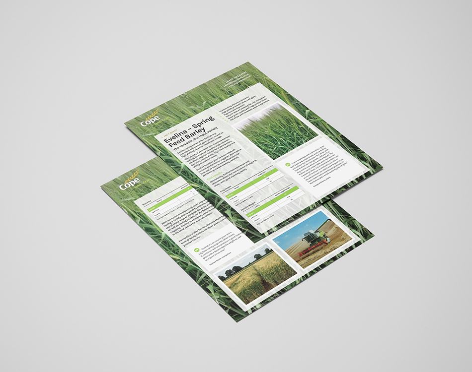 Cope Seeds & Grain brochure design