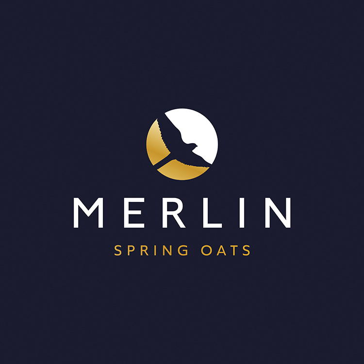 Merlin Spring Oats logo design
